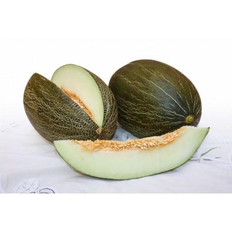 Caja 2 melones Piel de Sapo